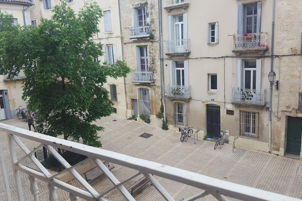 Loft r nov en plein centre de montpellier loft in for In legge suite in affitto