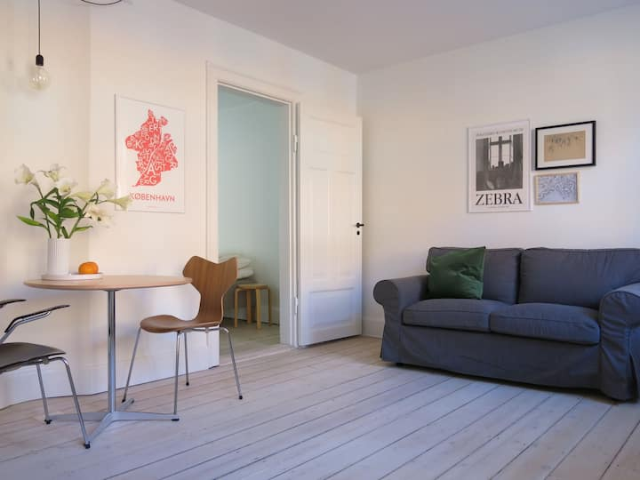 Charming boutique-design apartment Cph city