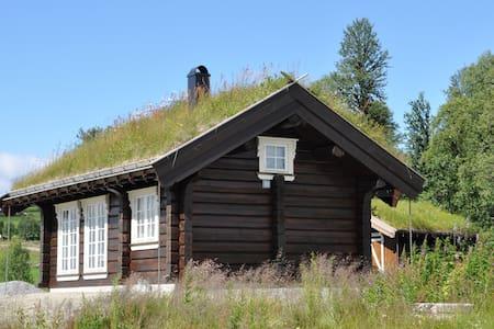 Nytt, utsøkt anneks på Golsfjellet - Gol