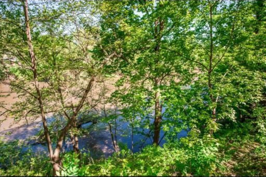 The view of the Crow River in summer