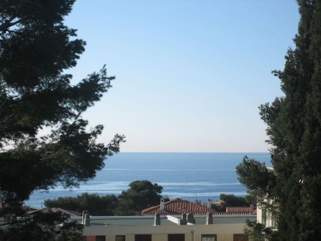 T2 av terasse face à la mer proche ttes commodités - Sausset-les-Pins - Appartement