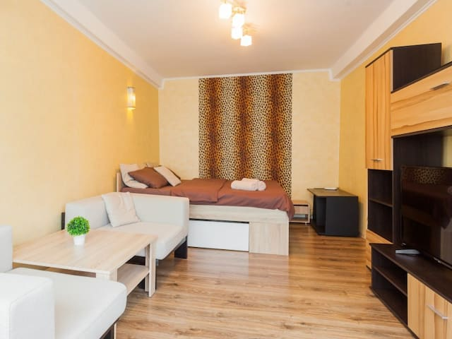 Cozy 1 bedroom apartment. Metro Obolon, Minska