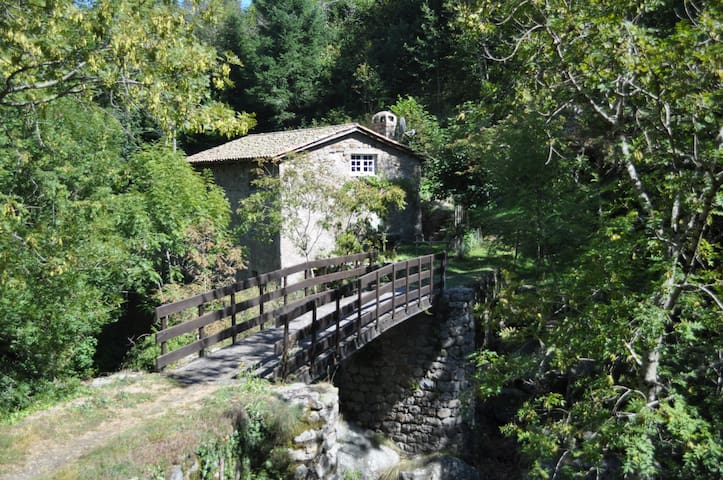 Charming Room in ancient mill close to the river. - Albon-d'Ardèche - Appartement