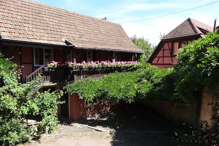 Romantic cottage where the nightcryer sings - Turckheim