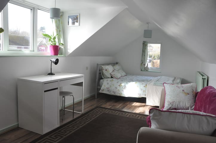 Light airy double loft room. - Sheffield - House