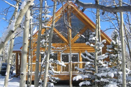 Luxury log cabin on 2 acres - Fairplay