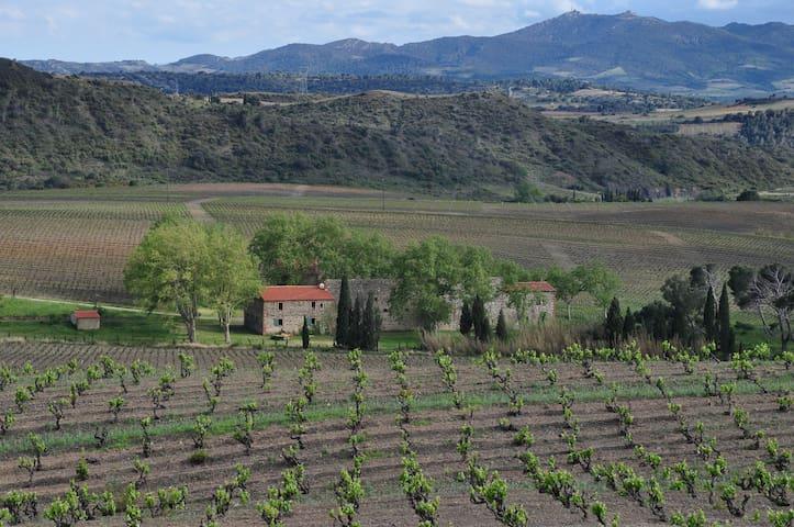 Mas viticole catalan - Tautavel - Huis