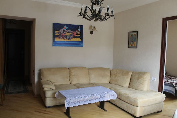 Cozy apartment in the City Center - Yerevan - Appartement