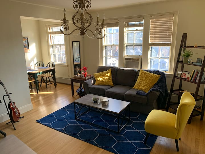 One Bedroom in Harvard Square - Cambridge, MA