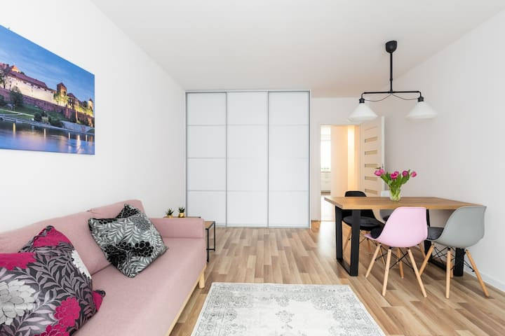 New cozy apartment in the center of Kraków