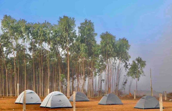 Green Valley Campsite2