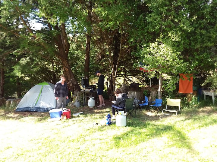 Peaceful Pigeon Bay - Campsite