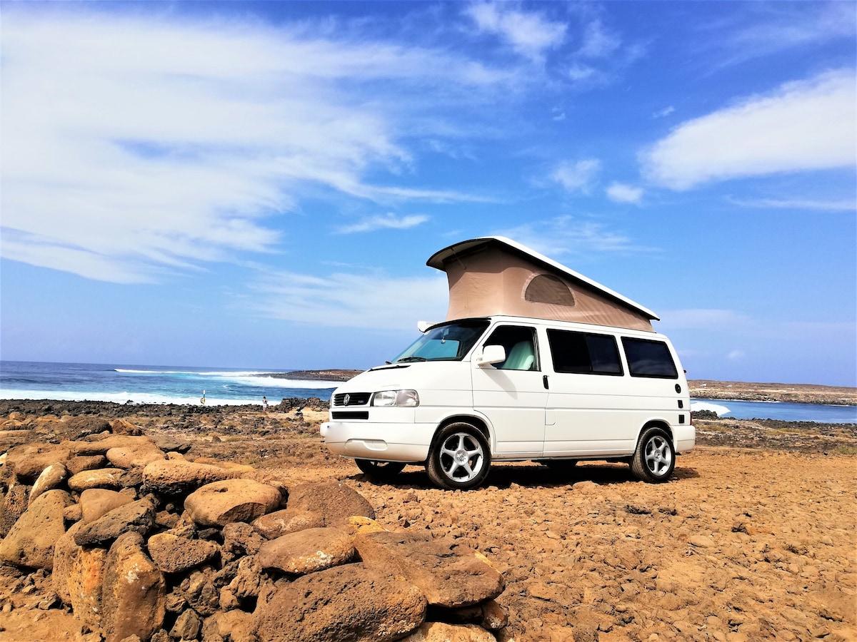 20 servilletas napkins outdoor White 25 x 25 camping caravanas carpa sol