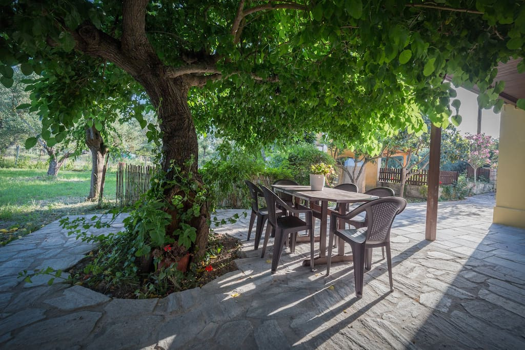 Private yard with a wild berry tree. Enjoy the wild berry tree shade and the quality veranda furniture (you can move where it suits you best)