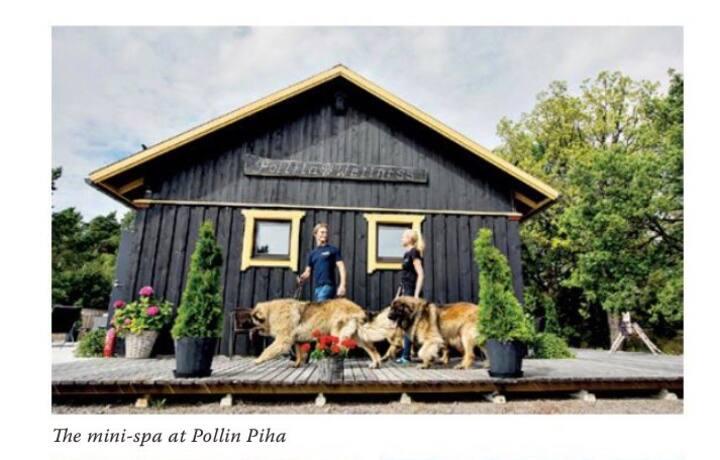Pollin Piha spa rakennus
