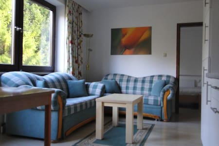 1Bedroom Apartment with Balcony - Lofer