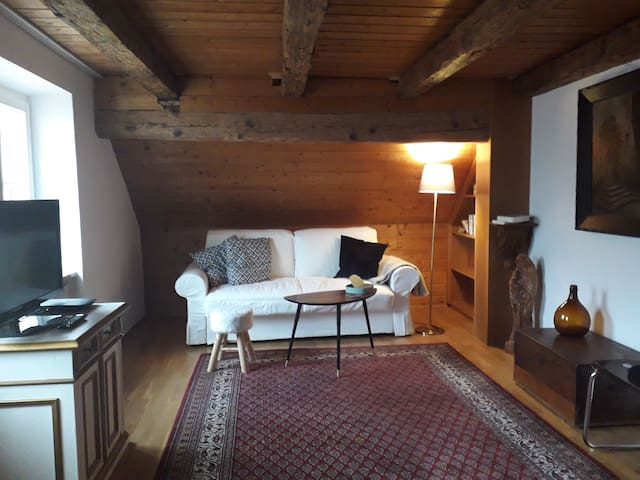 Zimmer mit Donaublick mitten in der Altstadt