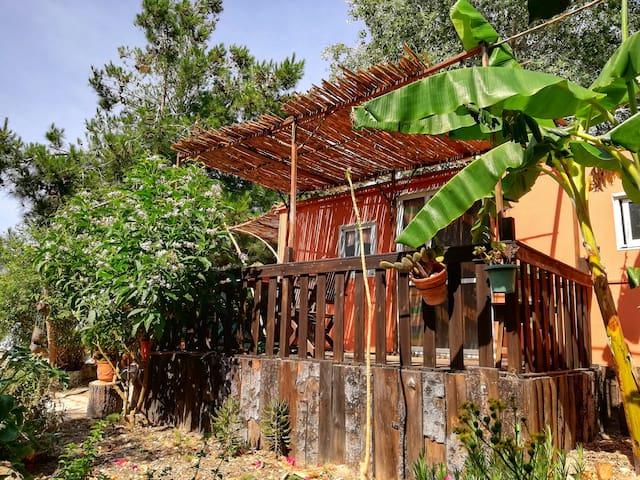 La casita de Lula, Cullera