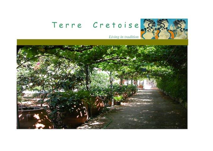 TERRE CRETOISE- ARIADNE - Fourni - Bungalow