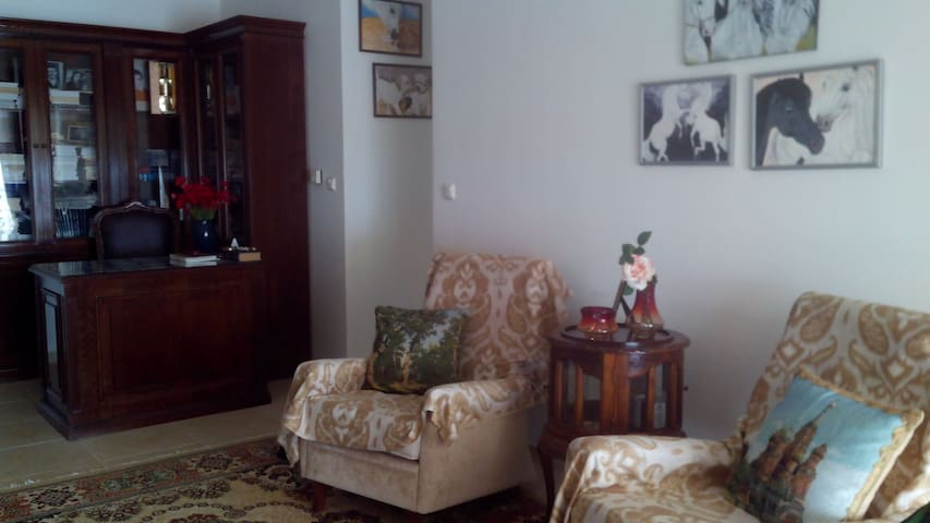 Sweet Home - Volos - Appartement