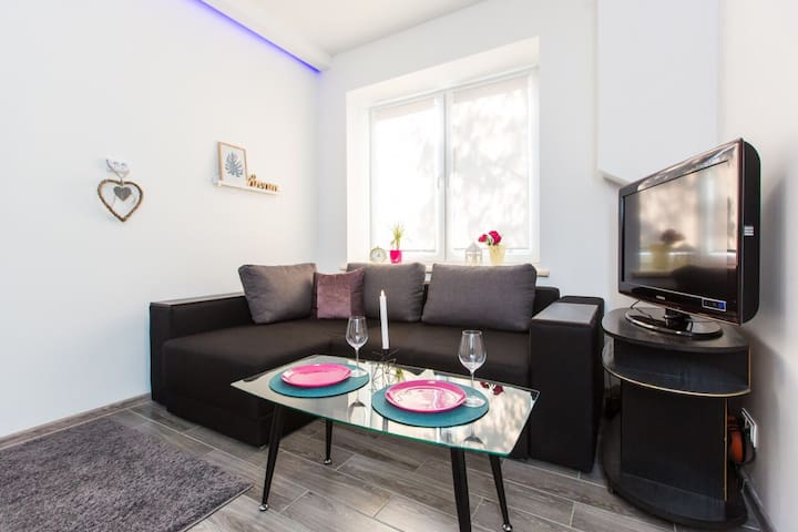 SoVA apartment  Lviv (center city) Romanyckogo str