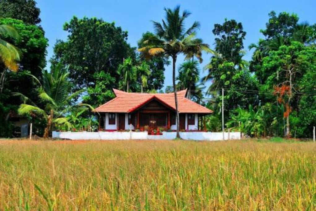 Front View of the Whole Villa with paddy view (lake in the back of the villa)
