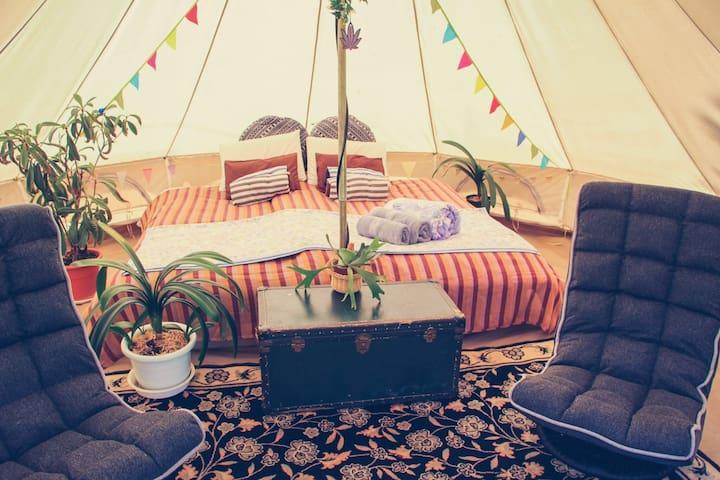 Comfortable outdoor tent stay in Niseko