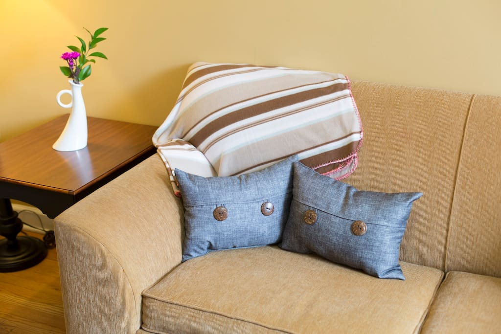 Comfy couch/hide-a-bed combo