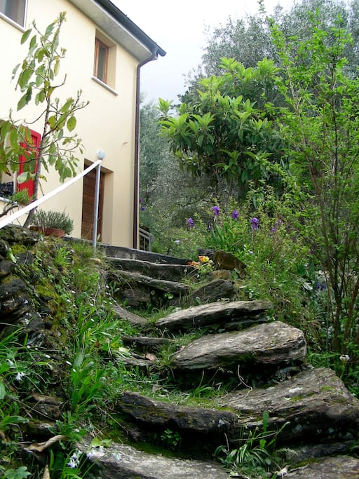 Ancient dry set steps up to the house.