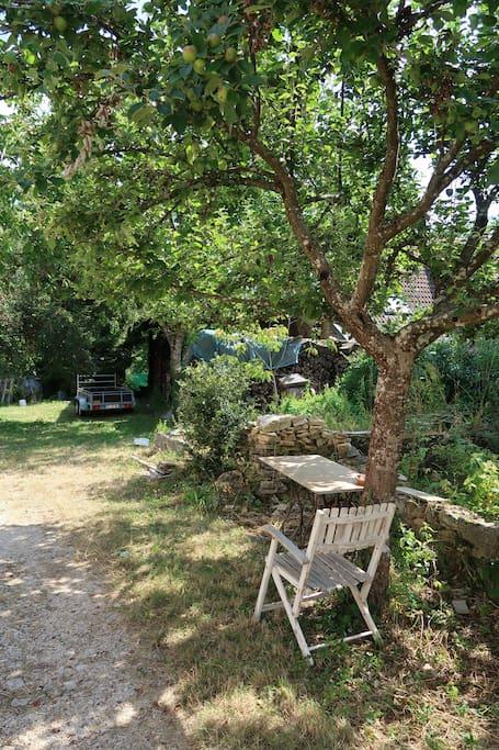 Jardin arboré, table de jardin disponible.