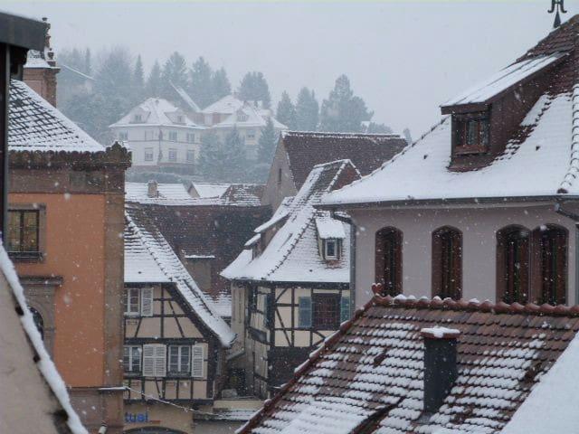 Les Toits d'Obernai - Obernai - Appartement