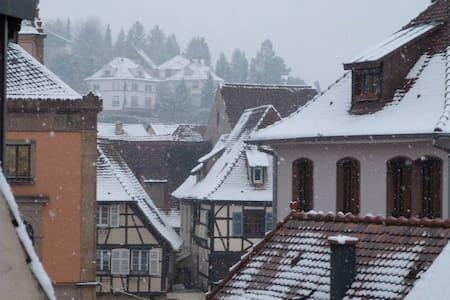 Les Toits d'Obernai - 오베르네(Obernai)