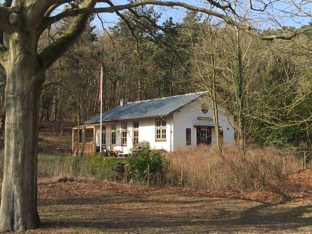 Ruim gezins-/vakantiehuis in Bloemendaalse duinen - Bloemendaal - Villa