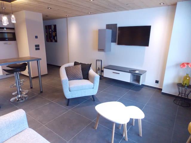 Studio Cosy/au pied des pistes/au coeur du village - La Clusaz - Apartamento