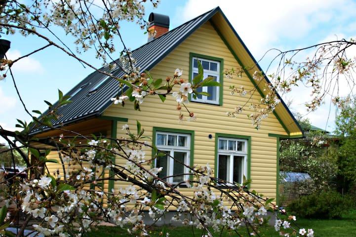 Cosy garden house/studio in Tammelinn