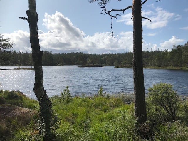 Hytte i Vestfjella Aremark