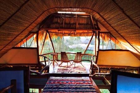 Jungle Home at Cotton Tree Lodge - Punta Gorda - Talo