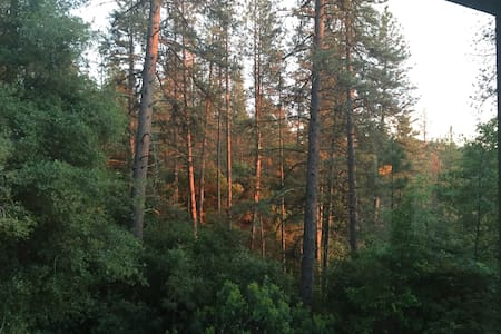 Pine Retreat-Walk to Historic Main St, Hospital - Placerville - Flat