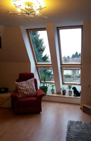 Nette,helle, ruhige 60m2 Whg.am Stadtrand von Graz - Graz - Apartament