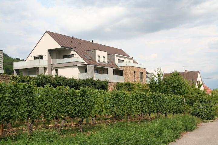 Vignoble alsacien : appartement  classé ***