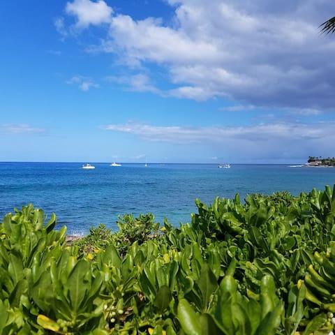 Makaha Beach one of Oahu's best snorkeling sites!