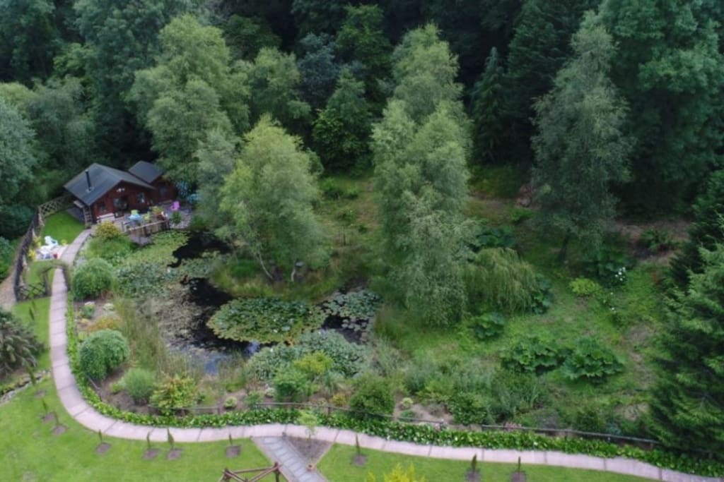 Aerial view of the cabin, the annex and the lily pond