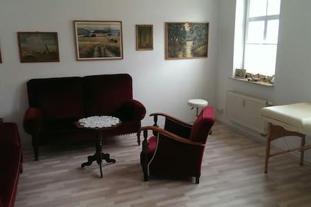 Ein-Zimmer Appartement im Zentrum - Meiningen - Lejlighed