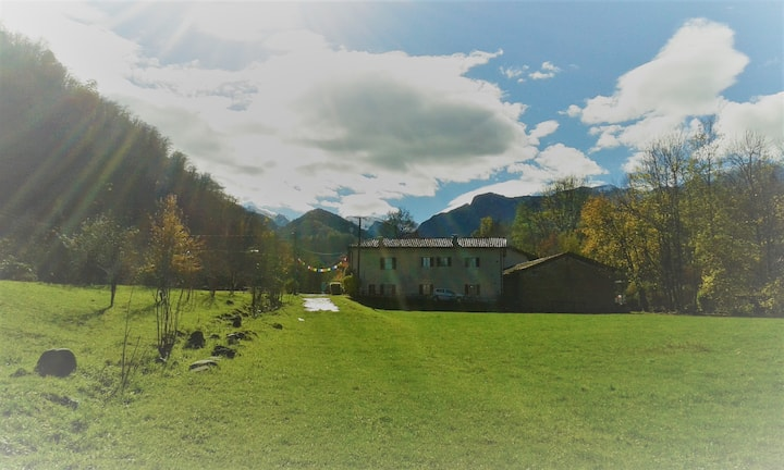 un lieu de paix dans une ancienne scierie
