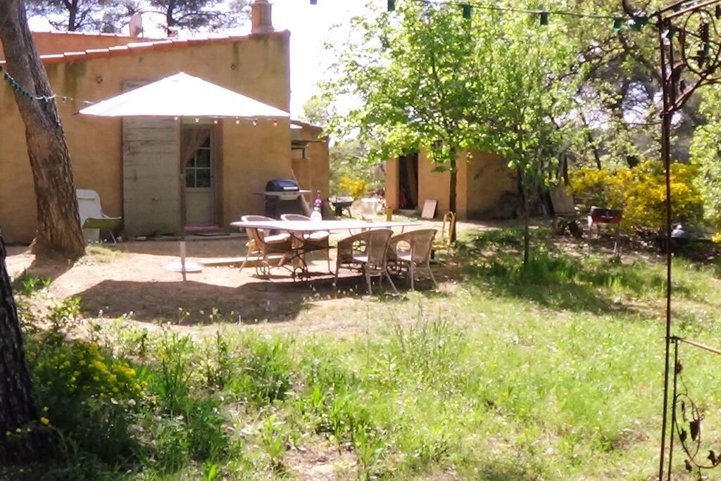 Jardin ombragé sur restanques, donnant sur piscine (10x3m)