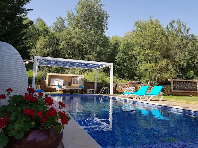 Casamino: private house with gardens and pool
