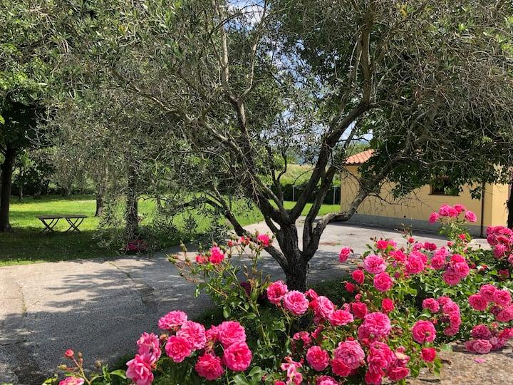 Casale Il giardino dei fiori