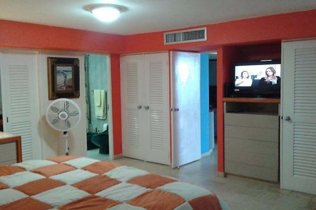 Spacious master bedroom, private full bath, TV, lost of space and walking closet next to the bathroom.