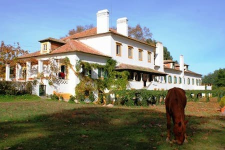 Charming rural estate in the Portugal countryside. - Rumah