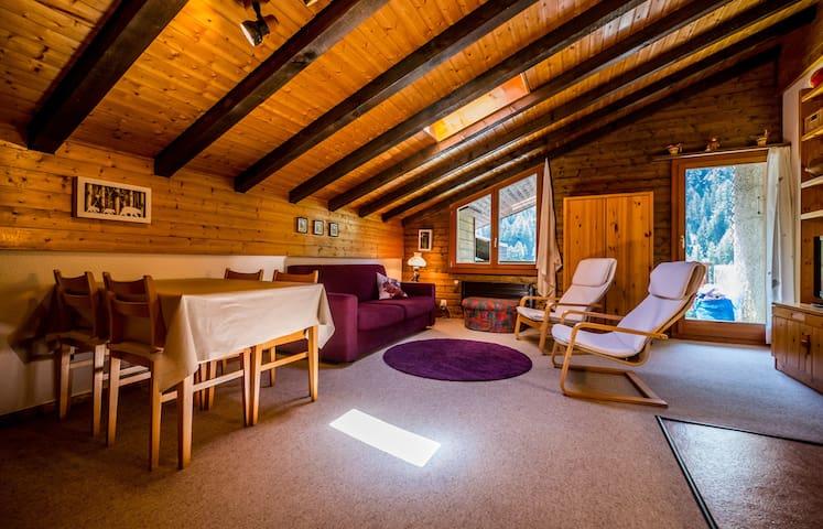 Cozy apartment in the centre of Grimentz